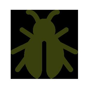 Scarafaggi, Cimici e Formiche